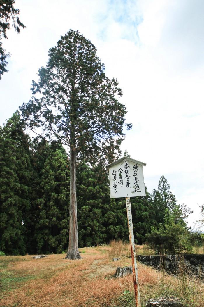 iwamurajyo05