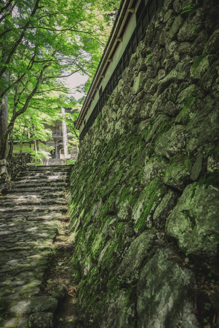 美濃の正倉院両界山横蔵寺の苔むした石垣