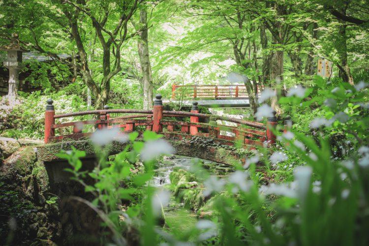 美濃の正倉院両界山横蔵寺の赤い欄干の橋