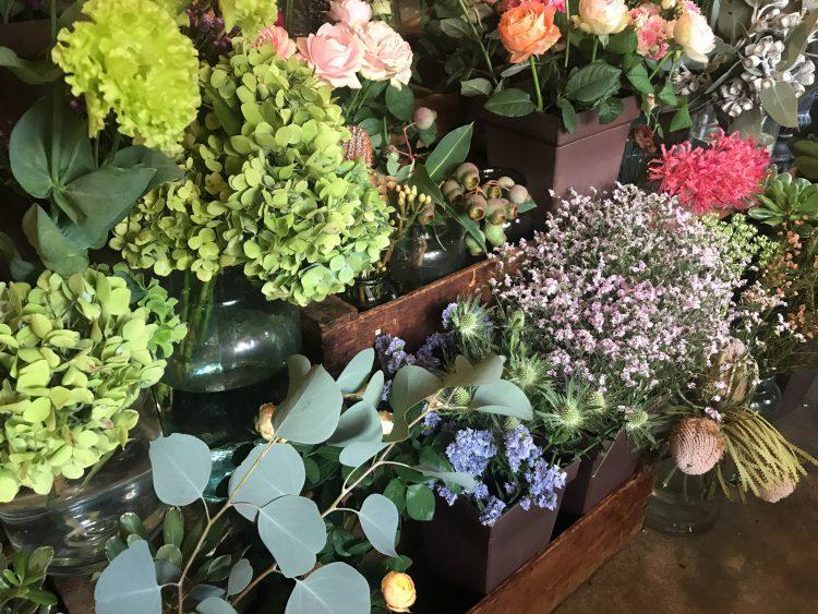 岐阜市のお花屋さんグリーンヴェールのお花と植物
