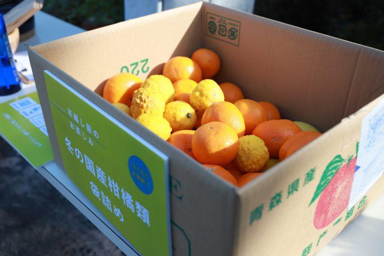 無農薬有機冬の柑橘類