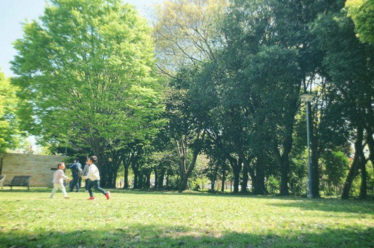 各務原学びの森の広場