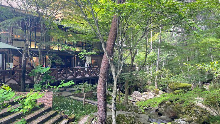 岐阜県瑞浪市にある自然に囲まれたカフェ・了庵(りょうあん)の自然あふれるお庭
